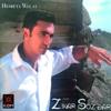 Zinar Sozdar - Dotmamê Canê artwork