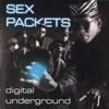Digital Underground - The Humpty Dance  artwork