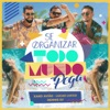 Se Organizar Todo Mundo Pega - Single