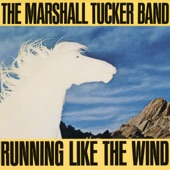The Marshall Tucker Band - Unto These Hills