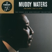 Muddy Waters - (I'm Your) Hoochie Coochie Man