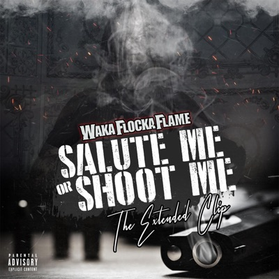 Salute Me or Shoot Me: The Extended Clip - Waka Flocka Flame