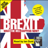 Brexit: What the Hell Happens Now?: 2018 Edition (Unabridged) - Ian Dunt