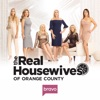 The Real Housewives of Orange County, Season 13 - Synopsis and Reviews