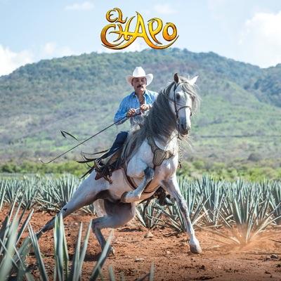 El Mago (Version Mariachi) - Single - El Chapo De Sinaloa