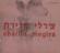 מספר 2 - Charlie Megira