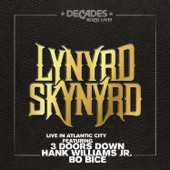 Lynyrd Skynyrd - Red White and Blue (Love It or Leave)
