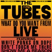 The Tubes - I Was A Punk Before You Were A Punk