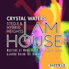 I Am House (The Remixes) ジャケット写真