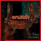 Tony Furtado - Golden (Broken)