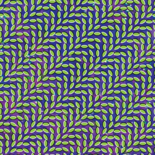 Animal Collective: Summertime Clothes