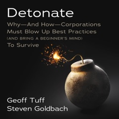 Detonate: Why—And How—Corporations Must Blow Up Best Practices (And Bring A Beginner's Mind) To Survive
