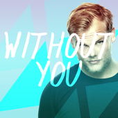 Without You (Originally Performed by Avicii Feat. Sandro Cavazza ) [Karaoke Version]