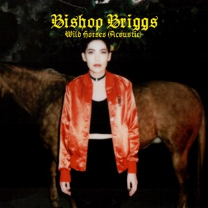 Wild Horses (Acoustic) - Single Mp3 Download