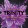 Audrey Carlan - Gefährliche Nähe (Trinity 2)