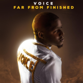 Far from Finished - Voice