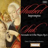 Serenade für Streicher, Op. 6: I. Andante con moto
