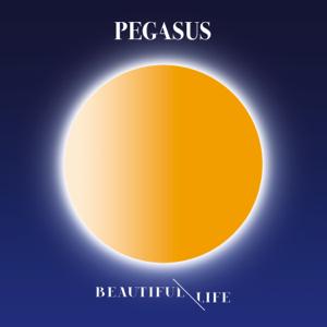 Pegasus - Beautiful Life