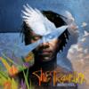 The Traveller - Baaba Maal