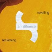 Ani DiFranco - Your Next Bold Move