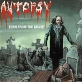 Autopsy - Torn From The Womb