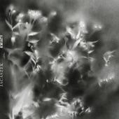 Jacaszek - Soft Music