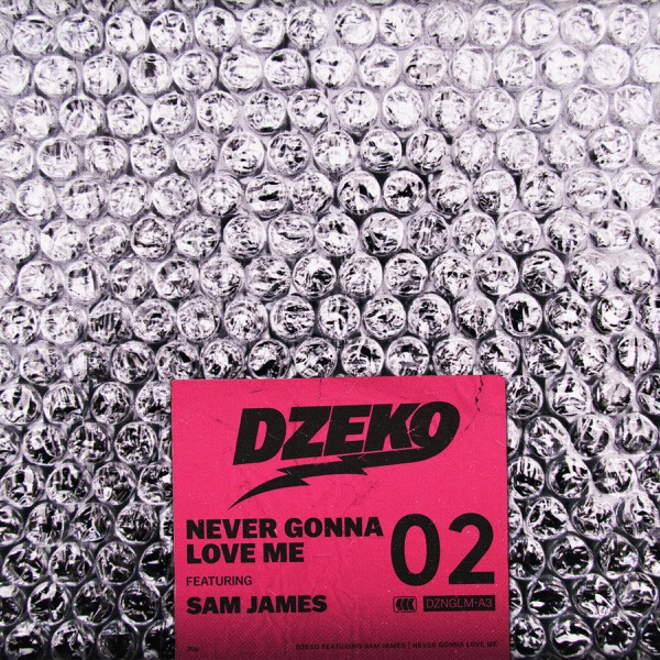 Never Gonna Love Me (feat. Sam James) - Single