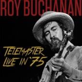 Roy Buchanan - Can I Change My Mind? (Live)