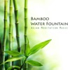 Bamboo Water Fountain Asian Meditation Music Collective and Japanese Bamboo Fountain Sounds Zen Garden Music