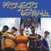 Proyecto Bengala - Vamos Tigres