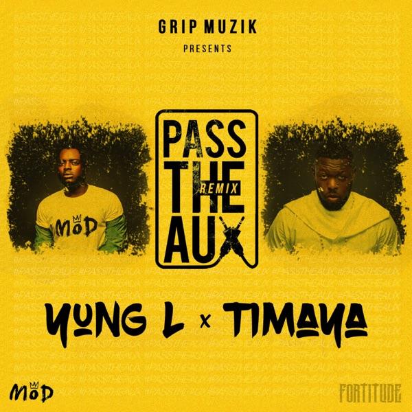Pass the Aux (feat. Timaya) [Remix] - Single