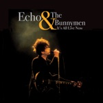 Echo & The Bunnymen - She Cracked (Live, 1985)