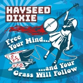 Hayseed Dixie - Ball of Confusion