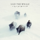 Said The Whale - Step into the Darkness