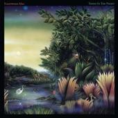 Fleetwood Mac - Caroline (Remastered)