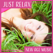 Just Relax – New Age Music: Meditation & Relaxation Healing Sound & Stress Relief & Pure Massage & Nature Spa