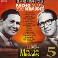Grandes Compositores: Pacho Galan & Lucho Bermudez