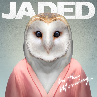 In the Morning - EP - Jaded album