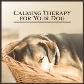 Calming Therapy for Your Dog: Music for Pets, Dealing with Anxiety, Nature's Aid, Easy Listen, Inner Harmony, Dogs Psychic Healing, Animal Reiki