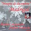 Noapte De Decembrie - Marin Constantin și Ștefan Iordache