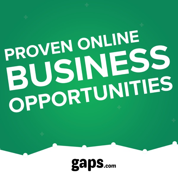 Gaps. Proven online business opportunities