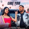 Like You feat Loco Ink Tere Jaisi Single