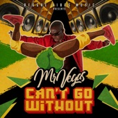 Mr. Vegas - Can't Go Without