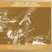 Circuit Des Yeux - Black Fly