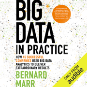 Big Data in Practice: How 45 Successful Companies Used Big Data Analytics to Deliver Extraordinary Results (Unabridged)