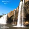 Shaggy & Marc Mysterio - Bromance (2k18 Remix) bild
