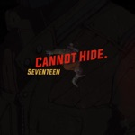 17 - Cannot Hide