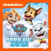 PAW Patrol, Brrr-ave Saves - Synopsis and Reviews