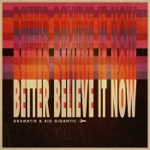 Gramatik & Big Gigantic - Better Believe It Now