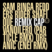 Sam Binga - Vandilero (Particle Remix)